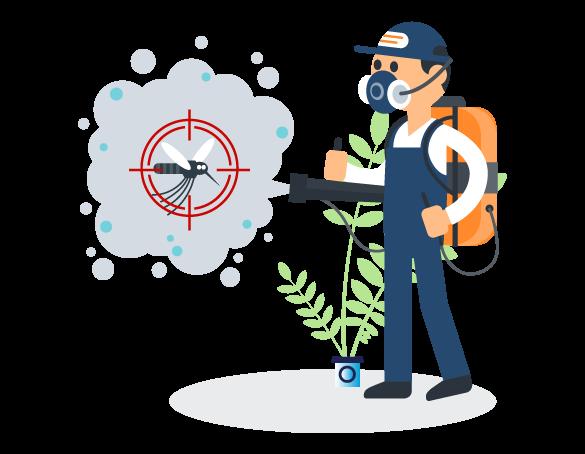Professional Pest Control Woolloongabba