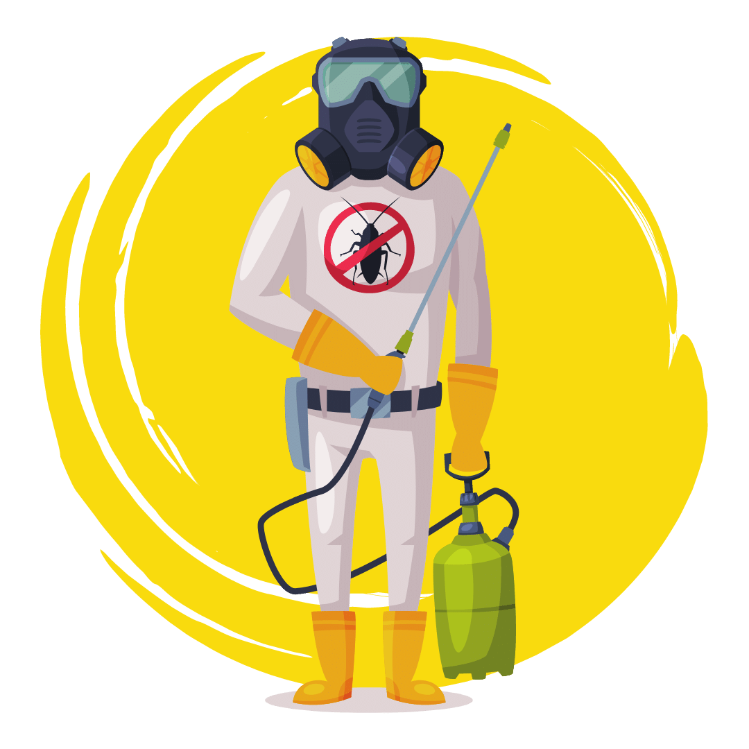 End of Lease Pest Control Woolloongabba