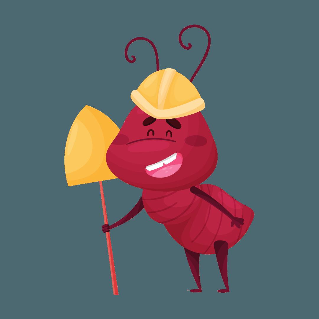 Termite Control Woolloongabba